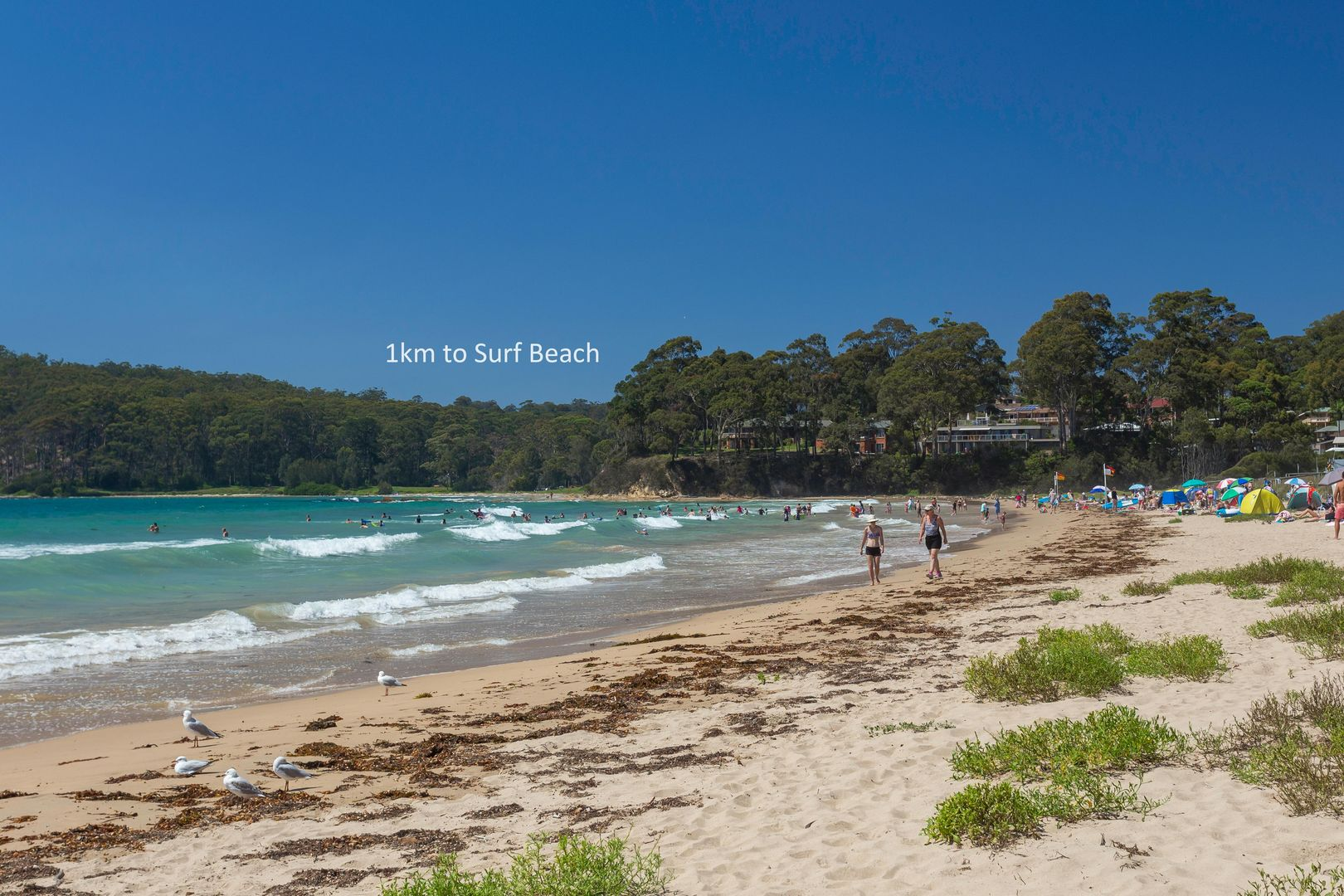 6A Jerupa Close, Surf Beach NSW 2536, Image 1