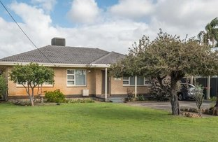 Picture of 7 Rhodes Street, Morley WA 6062