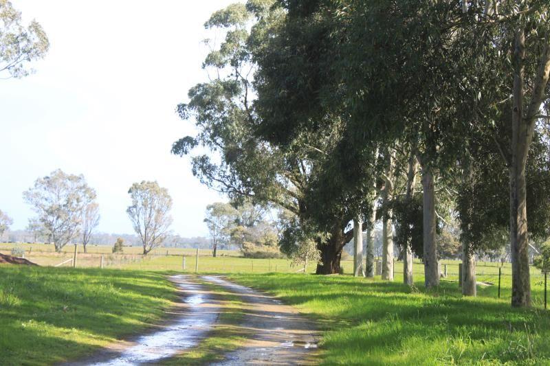 Munn Brothers Road, Langkoop VIC 3318, Image 1