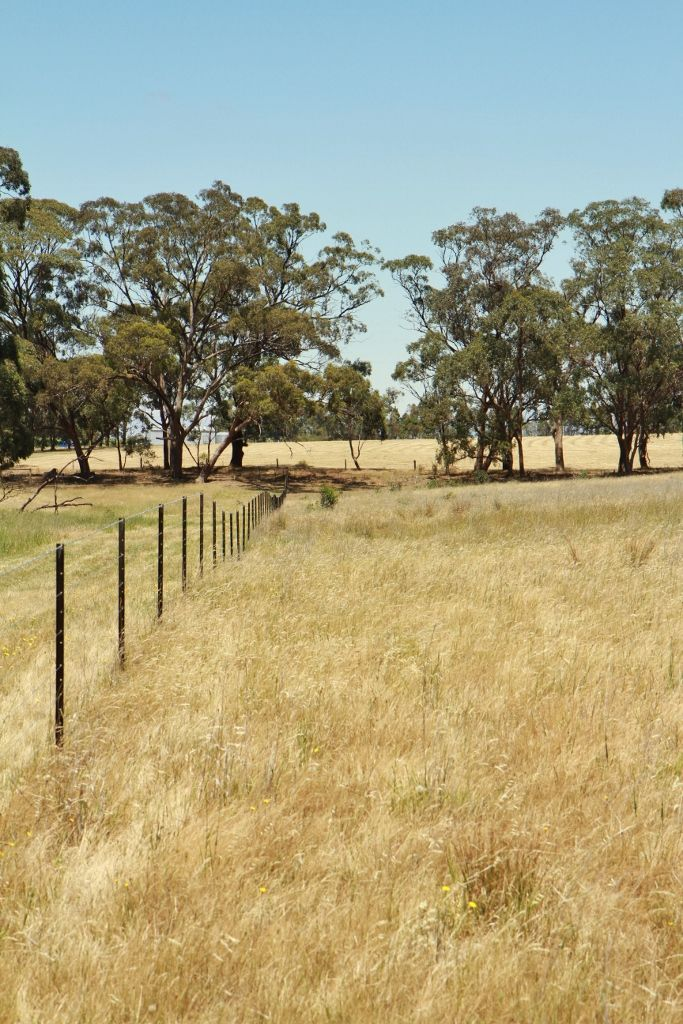 Lot 3, 58 Drummond Road, Heathcote VIC 3523, Image 2