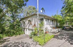 Picture of 24 Crescent Road, Eumundi QLD 4562