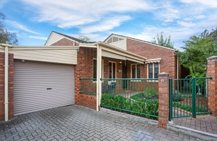Picture of 6/62 Maesbury Street, Kensington SA 5068