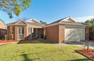 Picture of 53 Potts Road, Langwarrin VIC 3910