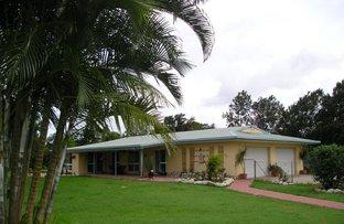 Picture of 27 Martinuzzi Close, Mourilyan QLD 4858