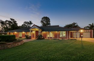 Picture of 24 Macadamia Street, Forestdale QLD 4118