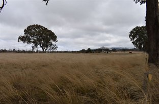 Picture of 89 Haddocks Road, Tenterfield NSW 2372