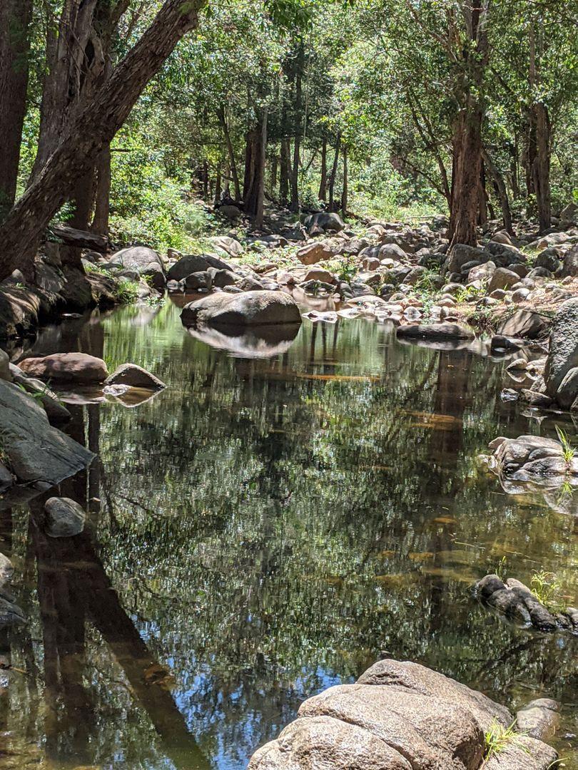 229 Cedarvale Road, Sandy Creek QLD 4515, Image 0