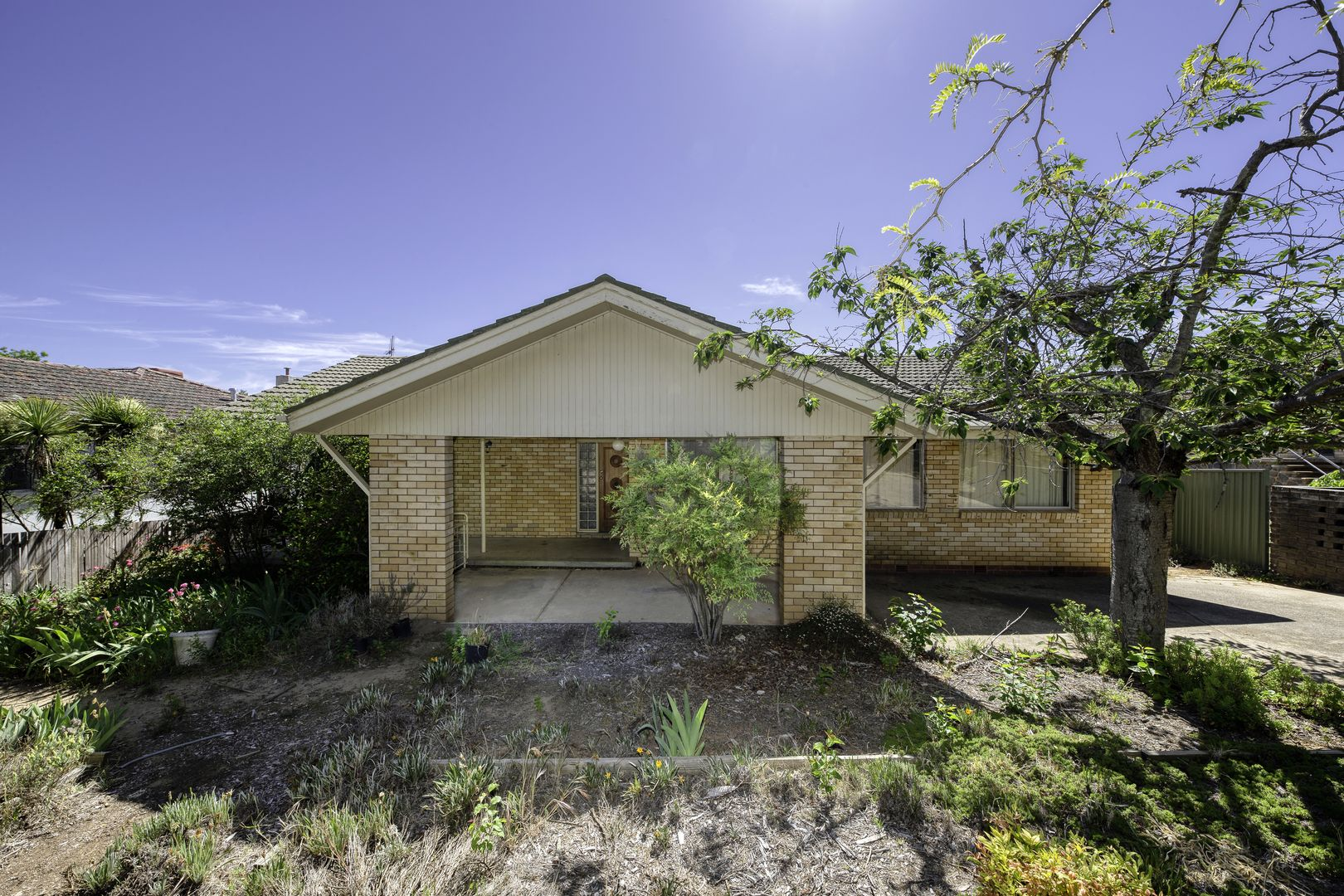 13 Haines Street, Curtin ACT 2605, Image 0