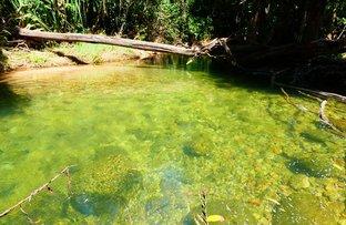 Picture of Jarra Creek QLD 4854
