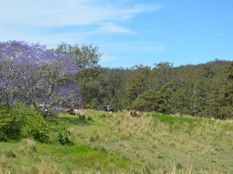 875 Grants Road, Bellthorpe QLD 4514, Image 2
