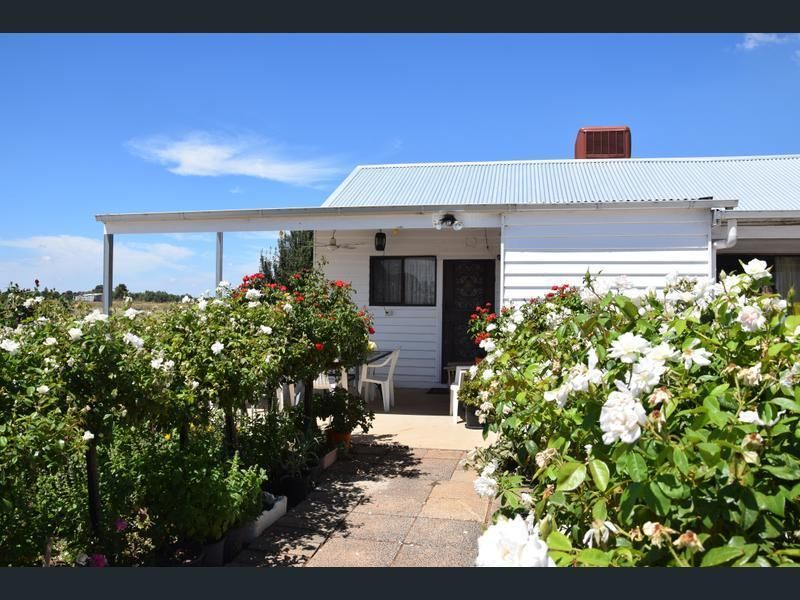 181 Bael Bael Road, Tresco VIC 3583, Image 0