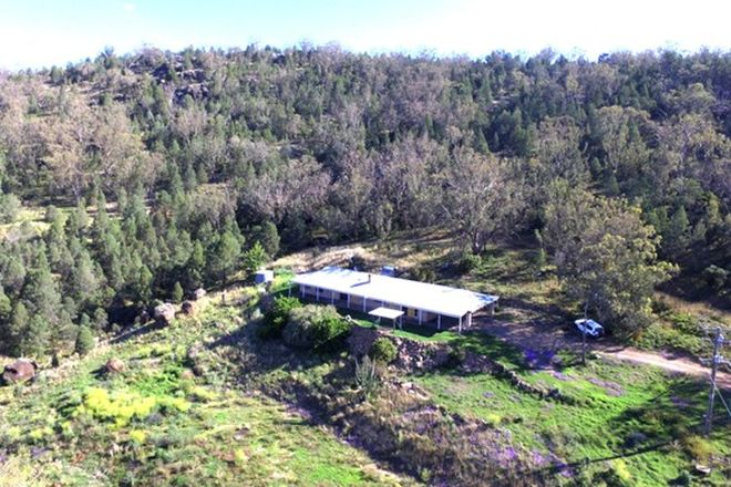Picture of 345 Wallabadah Road, WALLABADAH NSW 2343