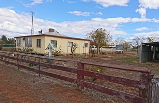 Picture of 32 Cunningham Street, Tullamore NSW 2874