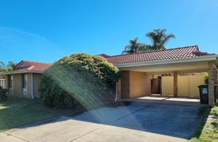 Picture of 3 Redgum Court, Thornlie WA 6108