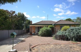 Picture of 10 Shackell Street, Echuca VIC 3564