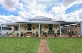Picture of 26 Muriel Street, Ungarie NSW 2669
