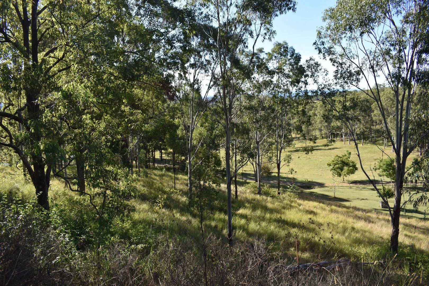 1217 Dyraaba Road, Kyogle NSW 2474, Image 1