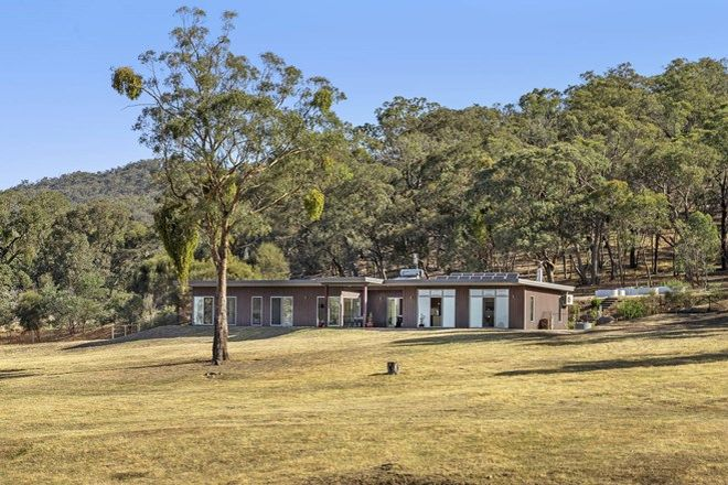 Picture of 455 Paddys Dam Road, TOOBORAC VIC 3522