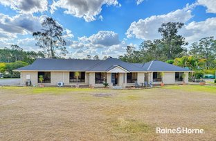 Picture of 1-3 Tigercat Court, Greenbank QLD 4124