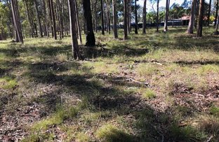 Picture of Lot 514 Wards Road, Glenwood QLD 4570