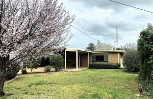 Picture of 26 Marcus Street, Griffith NSW 2680