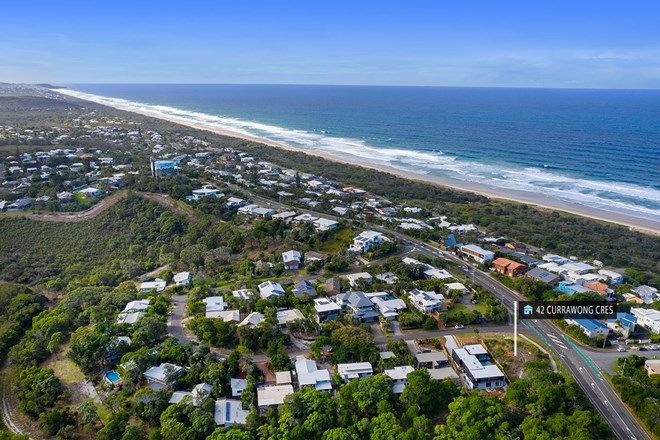 Picture of 42 Currawong Crescent, PEREGIAN BEACH QLD 4573