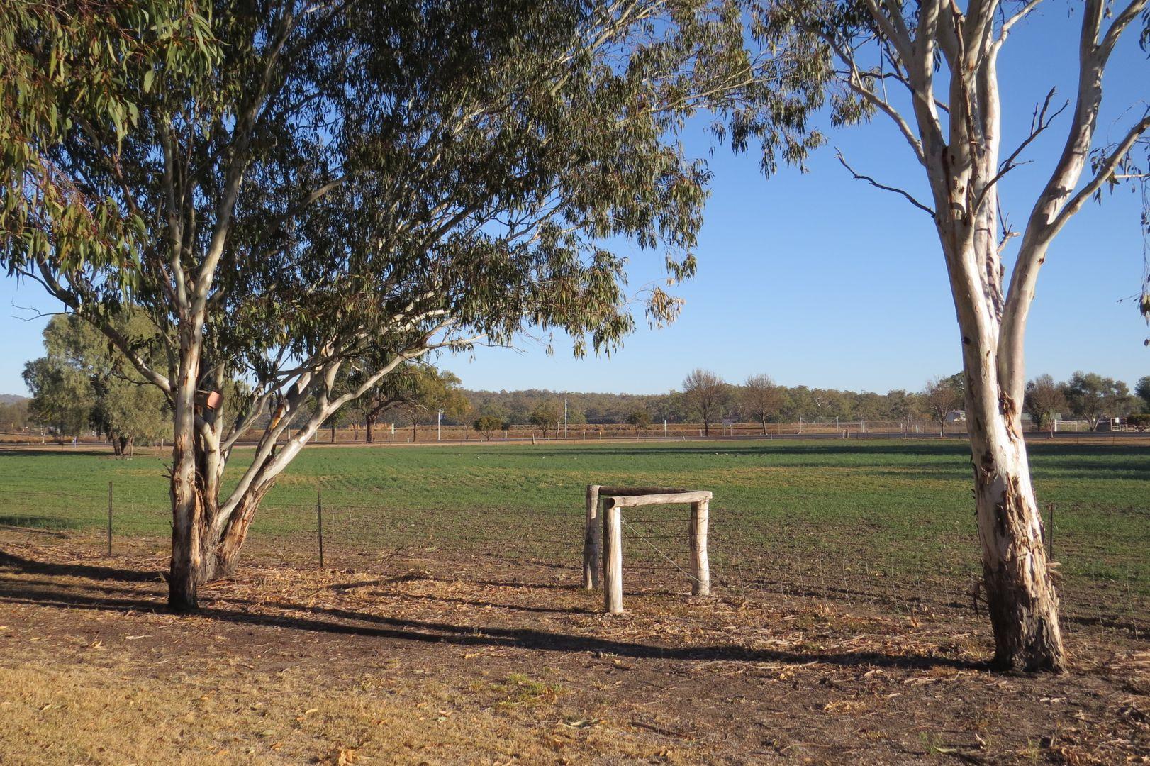 12921 Gwydir hwy, Warialda NSW 2402, Image 2
