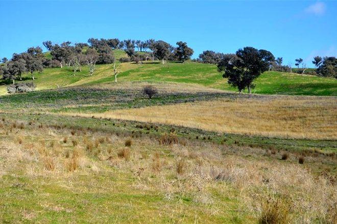 Picture of 'Tanyard Creek' Stantons Road, ADELONG NSW 2729