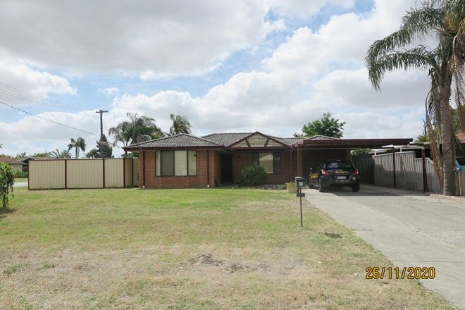 Picture of 1 Tern Court, THORNLIE WA 6108