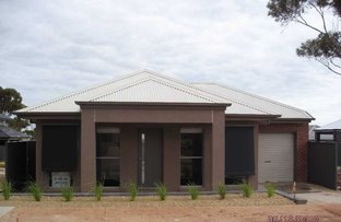 Picture of 19 Salmon Gum Crescent, Blakeview SA 5114