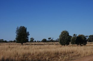 Picture of The Gums QLD 4406