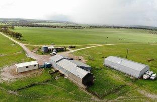 Picture of Aparima Farm, Milo Road, Dongara WA 6525