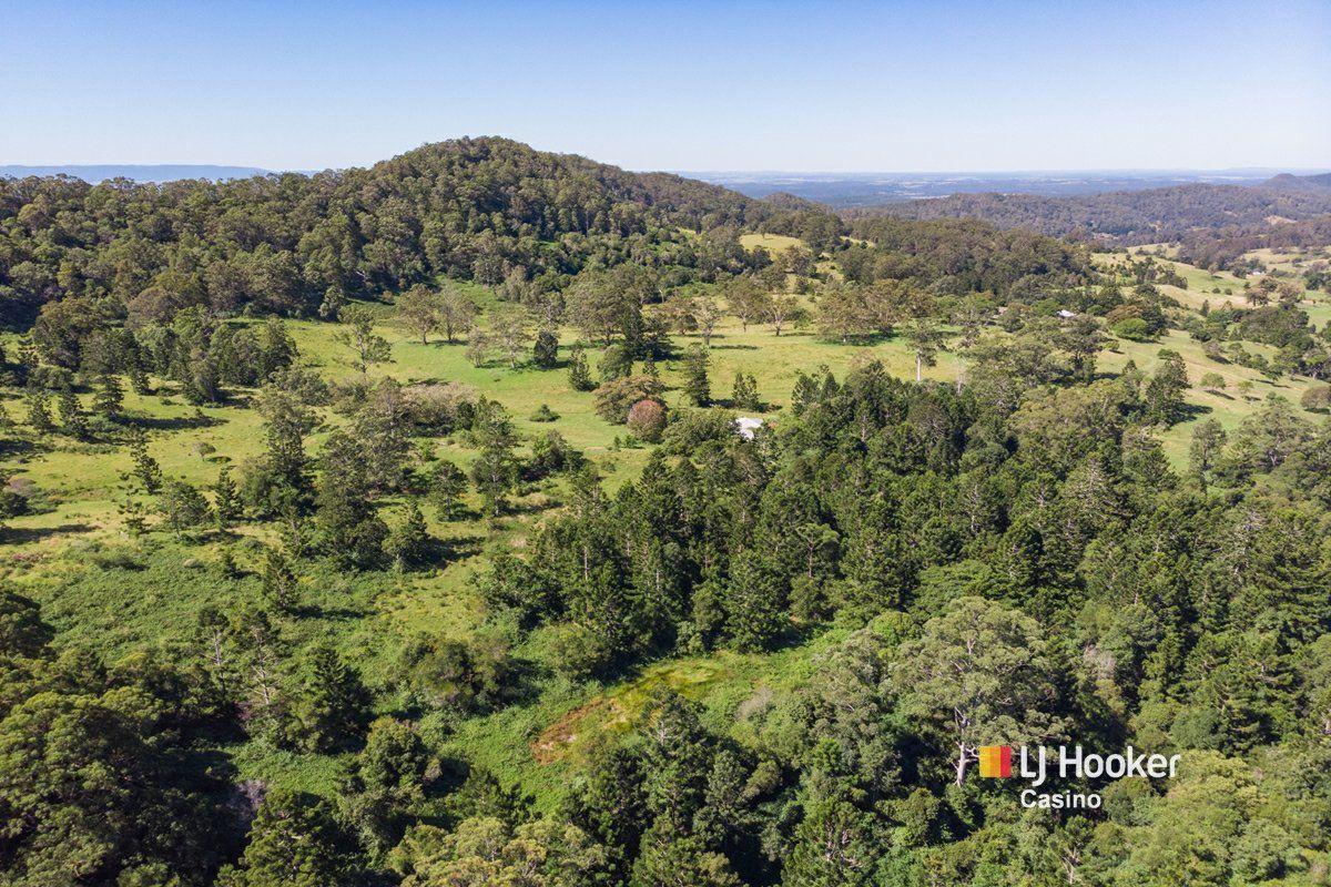 99 Dugan Road, Theresa Creek NSW 2469, Image 1