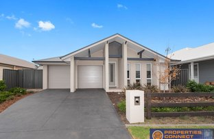 Picture of 19 Bangor Terrace, Cobbitty NSW 2570