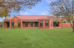 Picture of 128 Toorak Road, Leeton NSW 2705