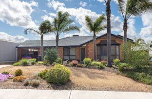 Picture of 46 Tumbella Drive, Murray Bridge SA 5253