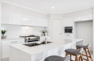 Picture of 47 Sandhurst Crescent, Peregian Springs QLD 4573