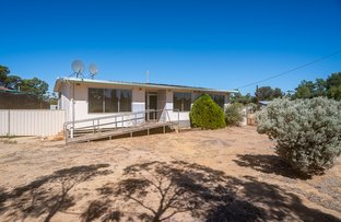 Picture of 11 Twine Street, Trayning WA 6488