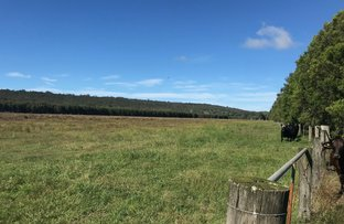 Picture of Lot 2 Boggy Creek Road, Bungawalbin NSW 2469