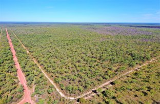 Picture of 3965 Florina Rd, Katherine NT 0850