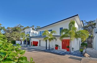 Picture of 16 Mari Street, Alexandra Headland QLD 4572