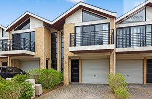 Picture of 7A Lucia Place, Mawson Lakes SA 5095