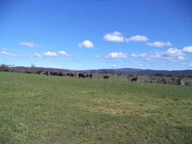 0 Batman Highway, Sidmouth TAS 7270, Image 0