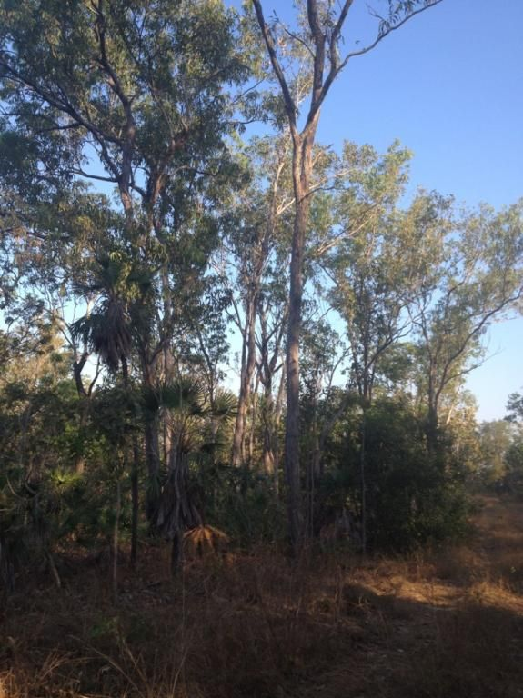 Lot 3499 Fog Bay Road, Dundee Downs NT 0840, Image 1