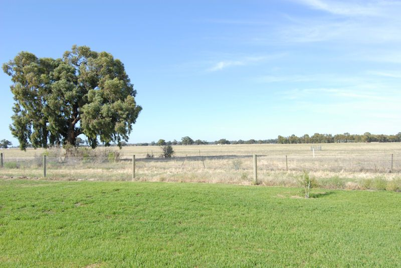 40 FLANAGANS LANE, Deniliquin NSW 2710, Image 2