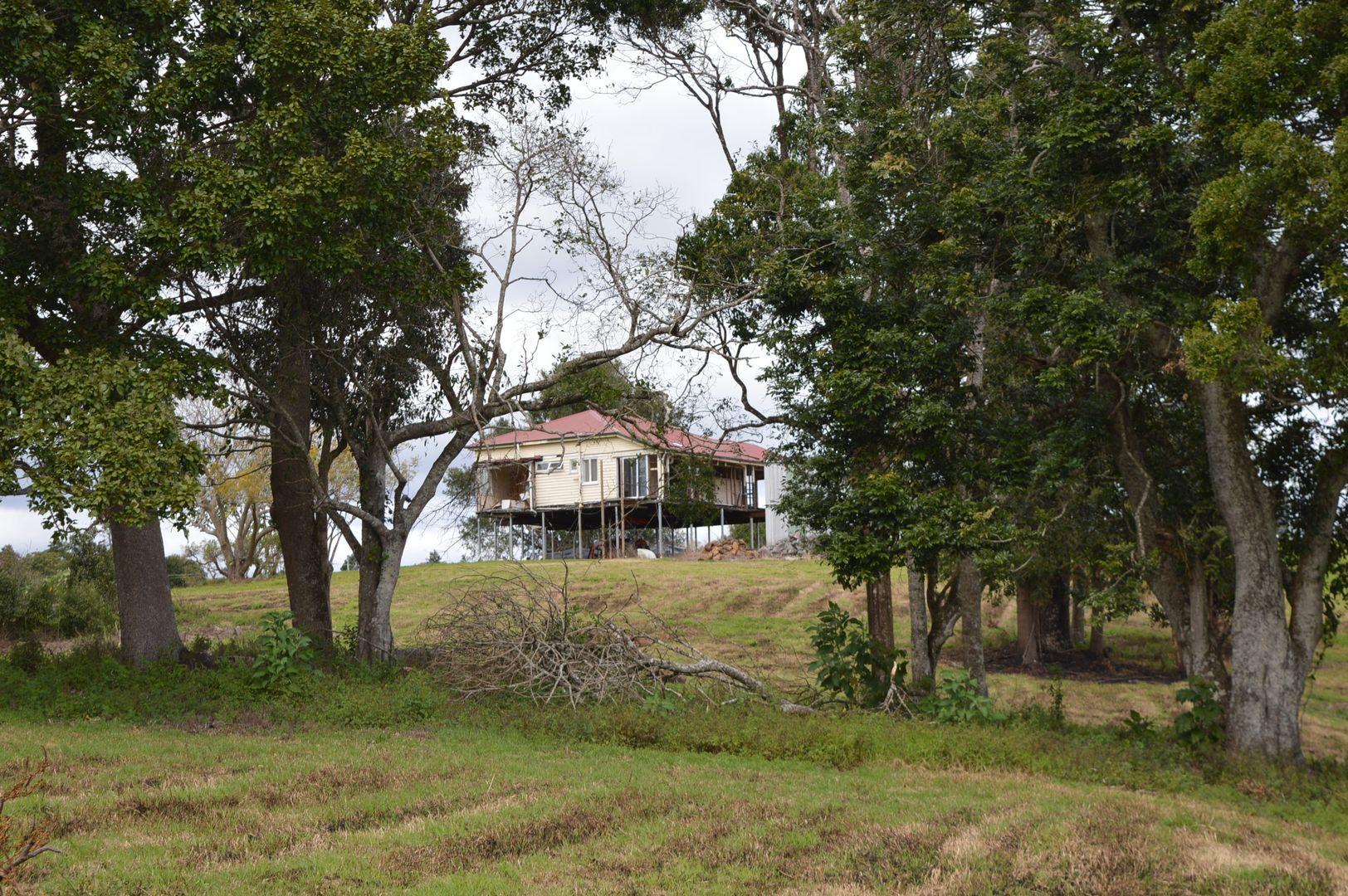 70 Macadamia Drive, Maleny QLD 4552, Image 2