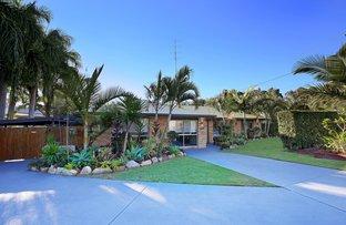 Picture of 50 Goodchap Street, Noosaville QLD 4566