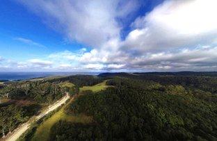 Picture of 2636 Tathra-Bermagui Road, Murrah NSW 2550