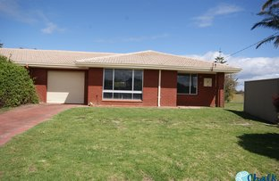 Picture of 7 Timms Street, Donnybrook WA 6239