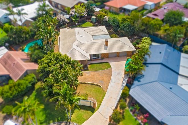 Picture of 6 Chardonnay Court, THORNLANDS QLD 4164